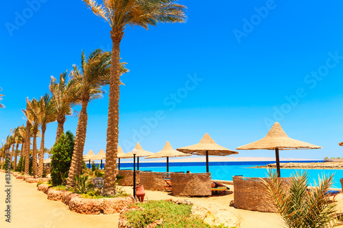 Foto op Aluminium Egypte View of the beach
