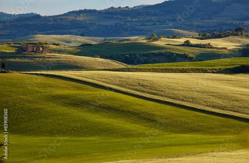 Scenic summer Tuscany landscape , Italy - 83908360