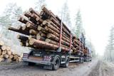 Timber truck on swedish dirt road - 83935700