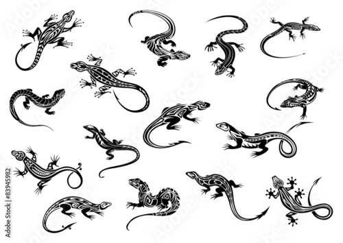 Fototapeta premium Gady czarne jaszczurki do projektowania tatuaży
