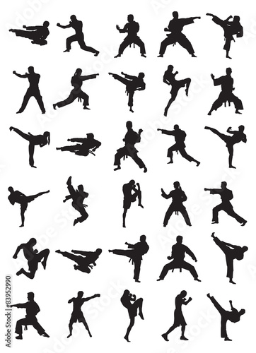 Martial Art Silhouettes Wallpaper Mural