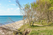 Ostseeküste auf dem Darß