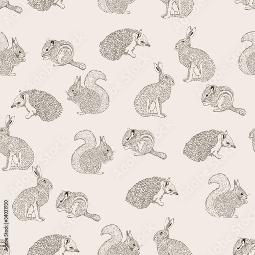 desen-w-kroliki-jeze-zajace-i-wiewiorki