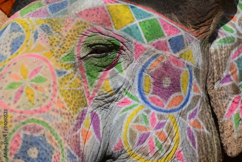 Colorful elephant in Jaipur, India Poster