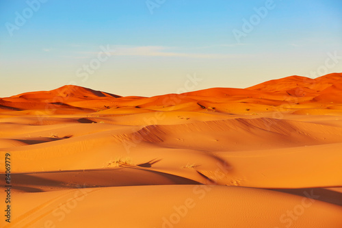 Poster de jardin Desert de sable Sand dunes in the Sahara Desert