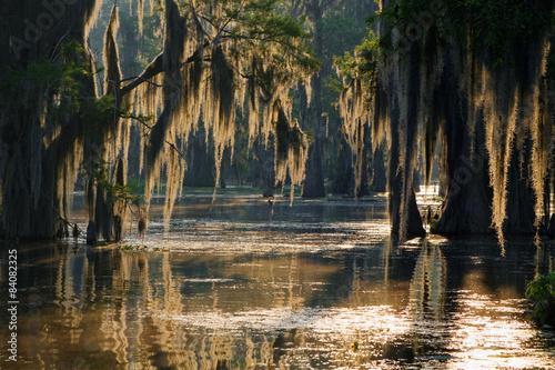 Lumières dans les Bayous de Louisiane Canvas-taulu