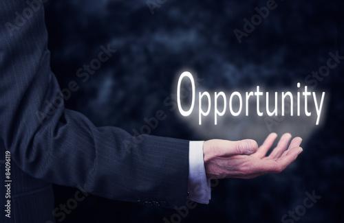 Fotografie, Obraz  Hand Holding Business Concept.