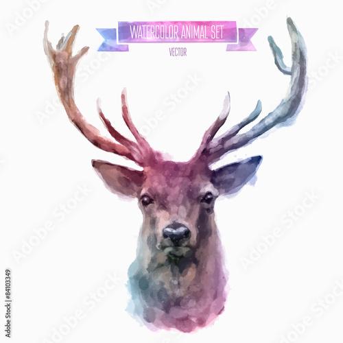 Fotografie, Obraz  Vector set of watercolor illustrations. Cute deer