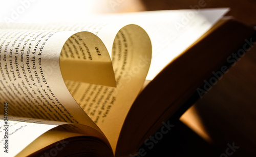 i love book Canvas Print