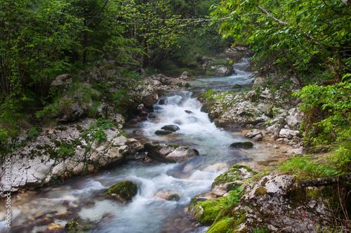 Foto op Aluminium Bos rivier River Soca in Trenta valley