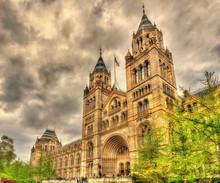 The Natural History Museum In ...