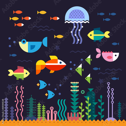 Sea life. Underwater world - 84144538
