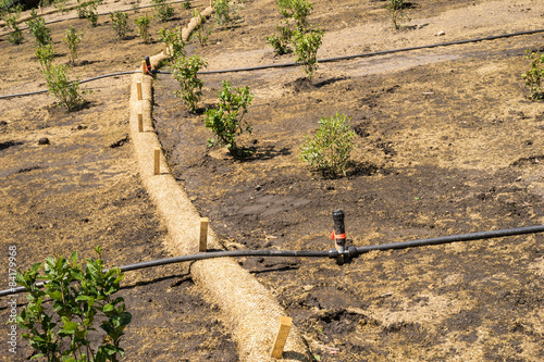 Photo Biodegradable Erosion Control straw sock guard fixed on a slope