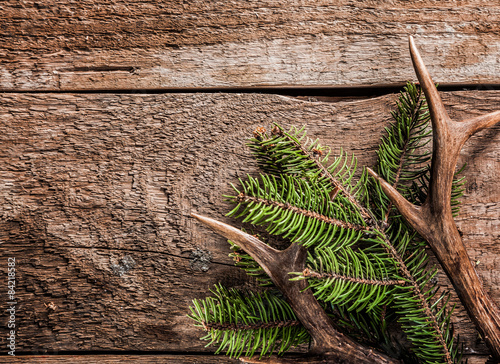 Poster Chasse Evergreen Branch and Deer Antler on Wooden Surface
