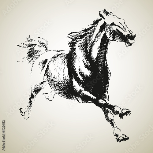 Keuken foto achterwand Art Studio Sketh of horse