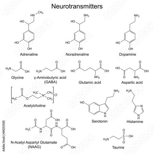 Photo Chemical formulas of basic neurotransmitters