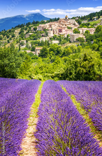 Lavender field and village, France. Canvas-taulu