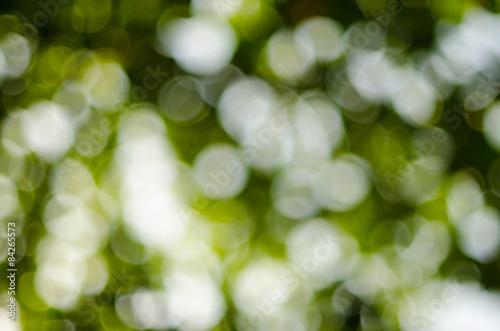 Staande foto Paardebloemen en water Abstract nature background