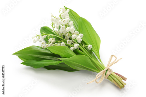 In de dag Lelietje van dalen lily of the valley posy isolated on white background