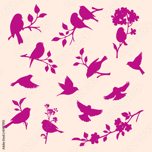 set of decorative bird and twig silhouettes Canvas Print