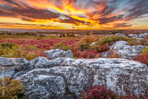 Fotografie, Obraz  Dolly Sods Sunset in West Virginia