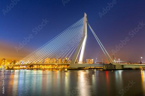 Foto auf Acrylglas Schwan Erasmus bridge Rotterdam