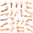 canvas print picture - Collage of  hands showing different gestures, isolated on white