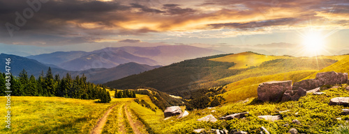 Canvas Prints Honey road through the meadow on hillside at sunset