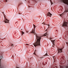 pink rose flower bouquet vintage background