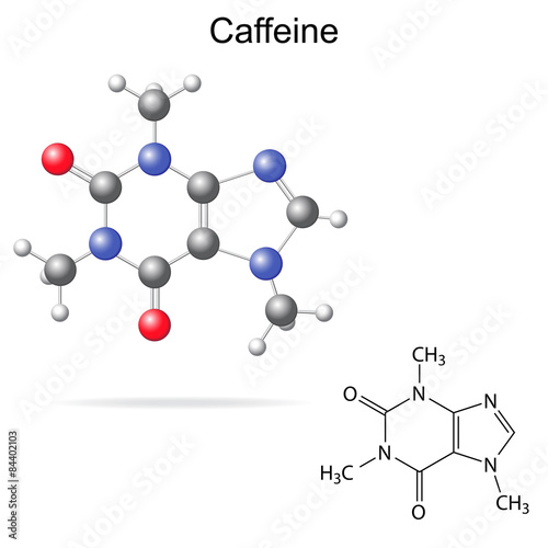 Fotografie, Obraz  Model and chemical formula of caffeine
