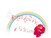 ハワイアン音楽