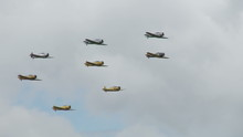 T-6 Texans & Harvards 24 1