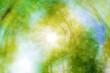 Frühling im Wald - abstraktes Bild