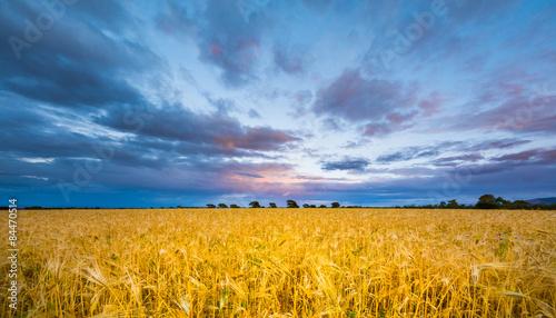Fotografie, Obraz  opposto al tramonto