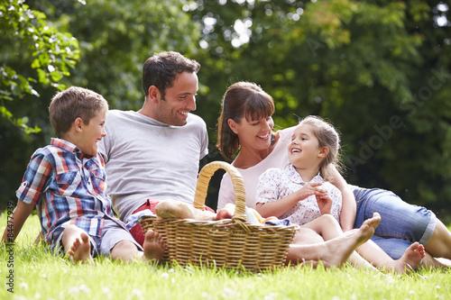 Plakat Rodzina Korzystających Lato Piknik W Wsi
