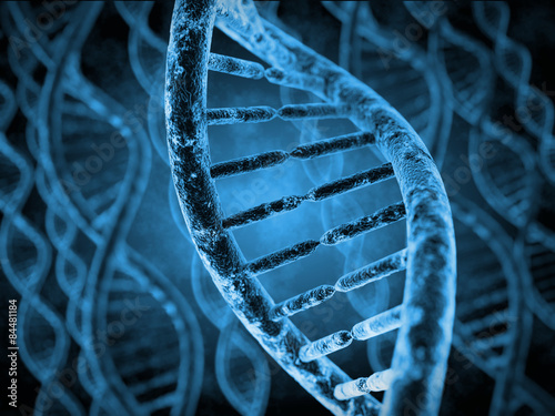 Fotografie, Tablou  DNA Molecules