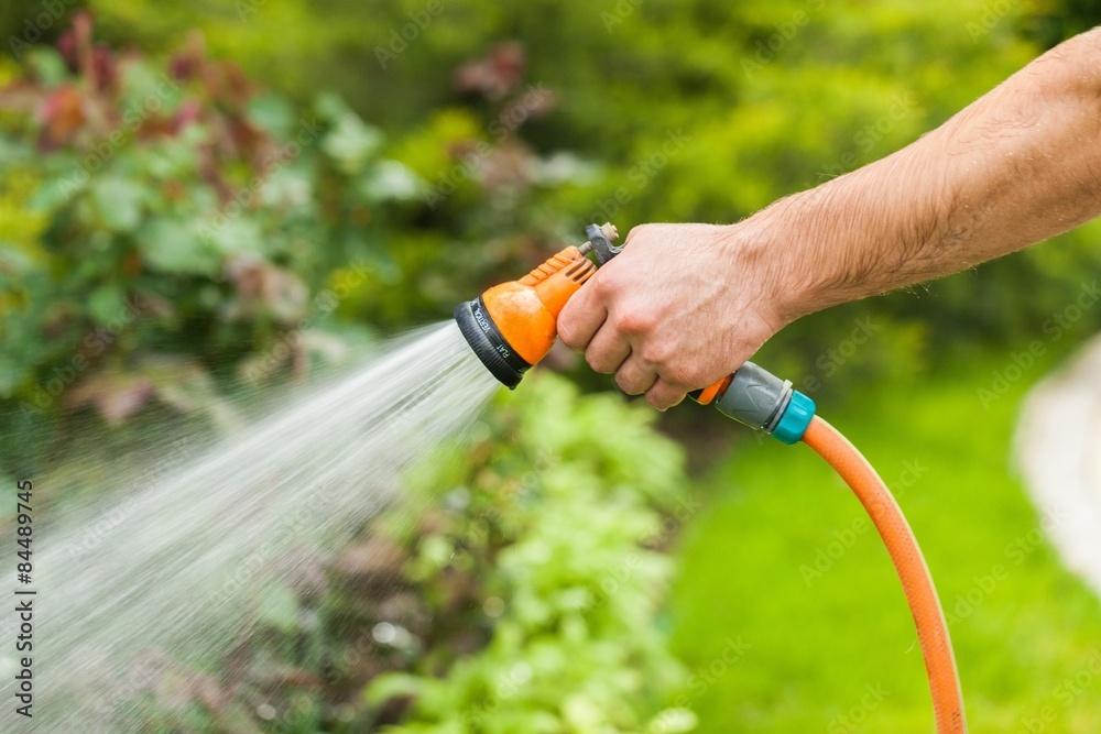 Fototapety, obrazy: Gardening, Hose, Watering.