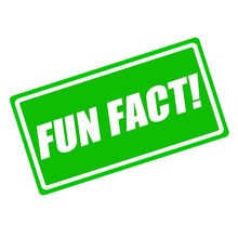 Fun Fact White Stamp Text On Green Background