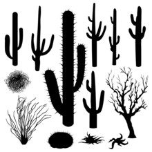 Vector Set Of Silhouettes Of C...