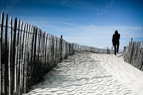 Fotografie, Obraz  Palissade plage
