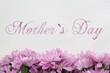 Mother s day Flowers - frame on white background