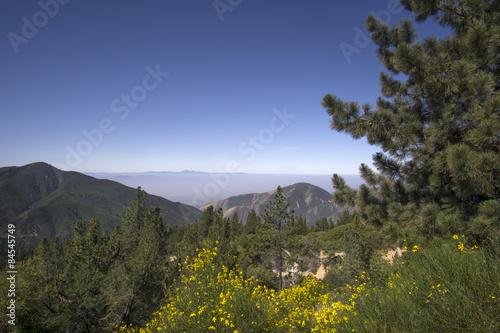 Photo San Bernardino National Forest, Ca,USA near Big Bear Lake