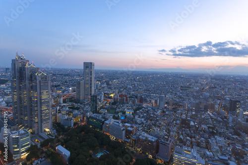 Plakat 新宿高層ビルから広角で望む 富士山と東京街並全景 トワイライト