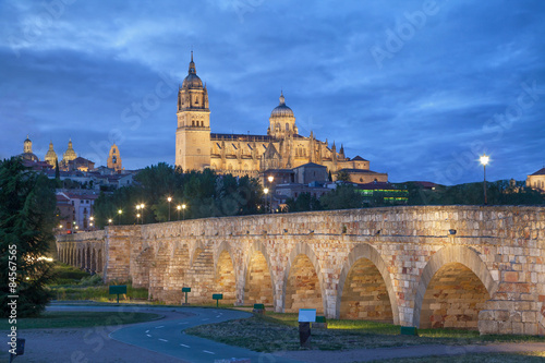 Romana Bridge with New Cathedral in Salamanca