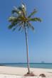 Ko Bulon Le, Thailand, traumstrand, Strand einsame Insel, Wasser