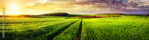 Poster Meadow Rural landscape sunset panorama