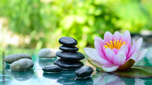 Photo Stands Water lilies spa and wellness
