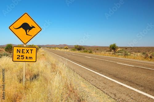 fototapeta na lodówkę Kangury na drodze