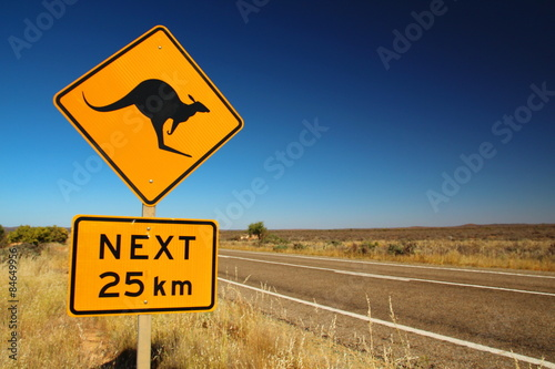 In de dag Australië Kangaroos on the road