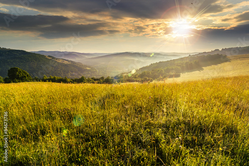 Canvas Prints Honey hillside meadow at sunset